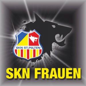 SKN-Frauen-Logo